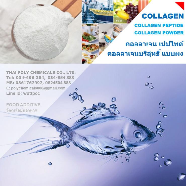 คอลลาเจนจากปลา, คอลลาเจนสกัดจากปลา, Fish Collagen, Fish Collagen Peptide, Marine Fish Collagen
