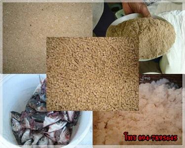 ซื้อขายกากถั่วเหลืองปลากุ้งป่นถั่วมันเส้นข้าวโพดรำอาหารสัตว์โทร0947895645