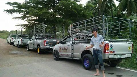 รถรับจ้าง รถกระบะรับจ้าง รถรั้ว ขนส่งพืชผลเกษตร หญ้าปูสนาม