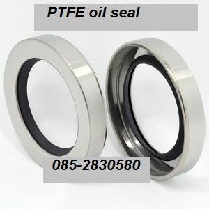 ซีลกันน้ำมัน PTFE OIL SEAL